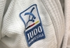 Judo Bundesliga scheduled as a tournament